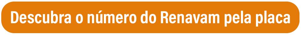 Não é possível fazer uma consulta de placa no Detran, descubra o Renavam para poder consultar